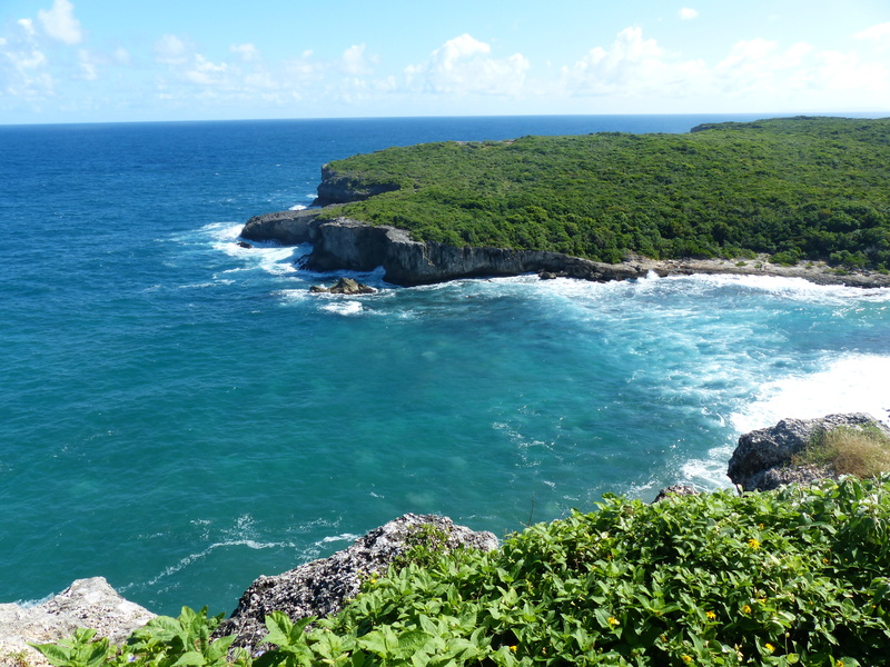 Lipette : Voyage en Guadeloupe P1450628