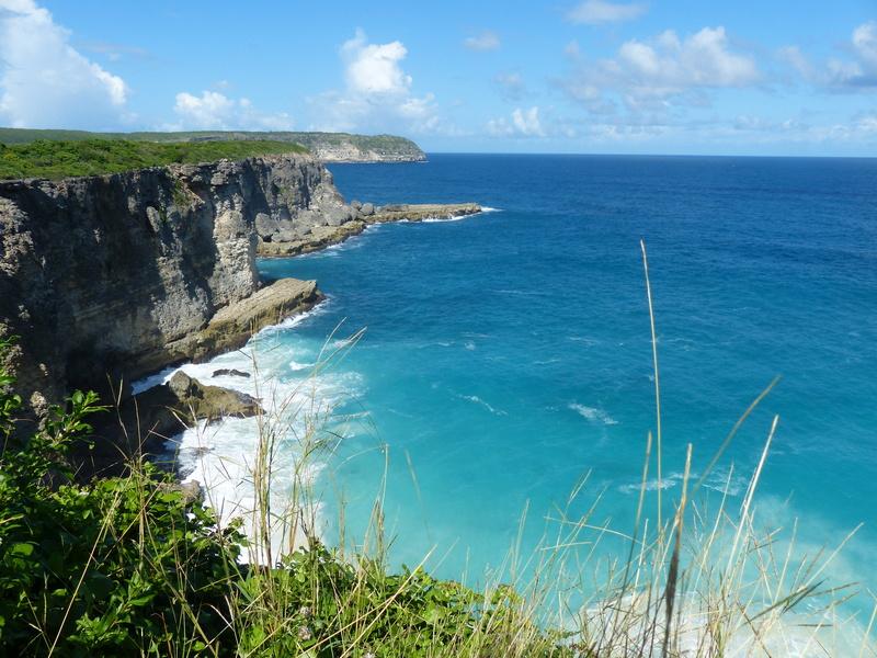Lipette : Voyage en Guadeloupe P1450629