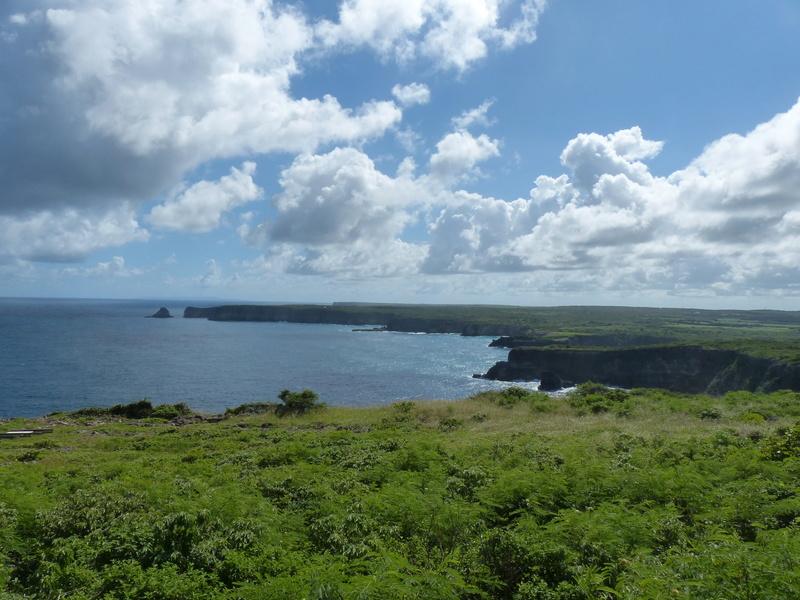 Lipette : Voyage en Guadeloupe P1450632