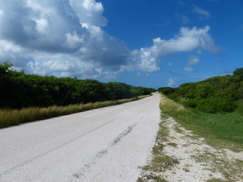 Lipette : Voyage en Guadeloupe P1450644