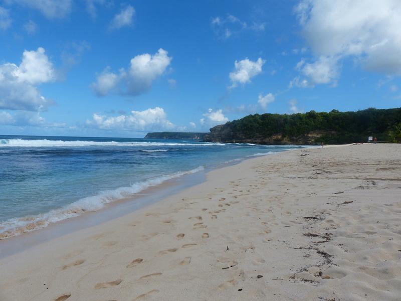 Lipette : Voyage en Guadeloupe P1450646