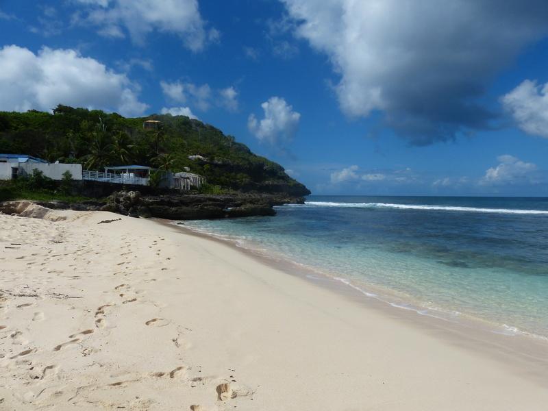 Lipette : Voyage en Guadeloupe P1450649