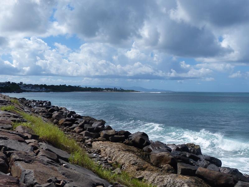 Lipette : Voyage en Guadeloupe P1450652