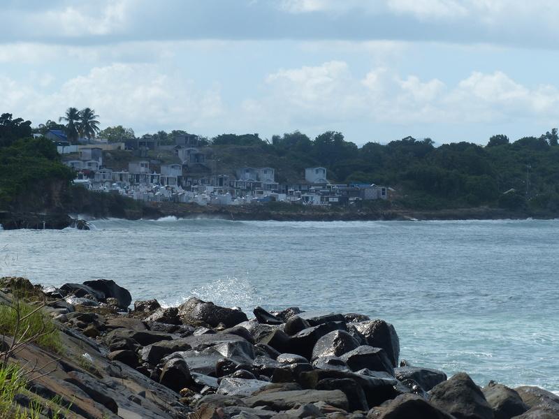 Lipette : Voyage en Guadeloupe P1450653