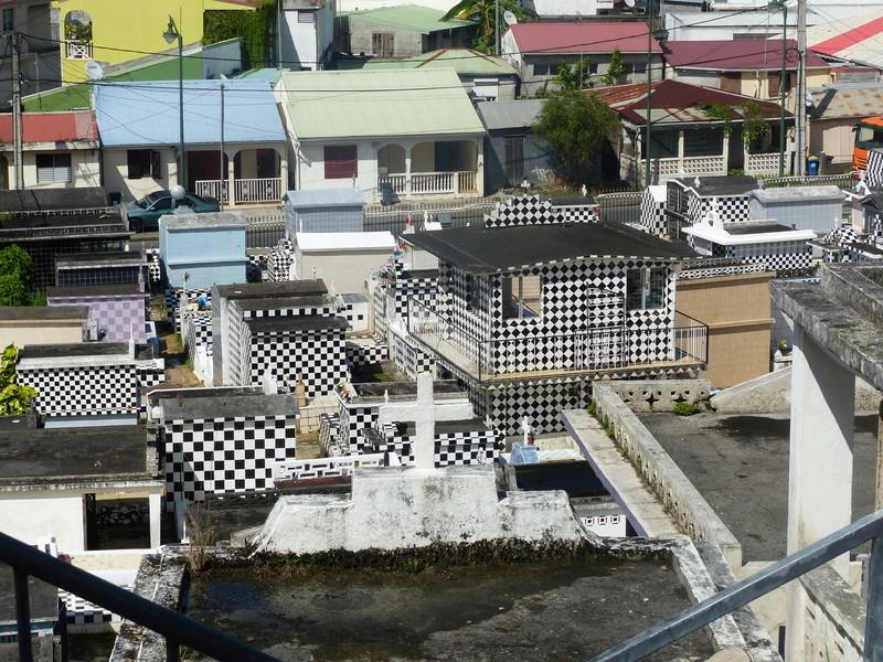 Lipette : Voyage en Guadeloupe P1450710