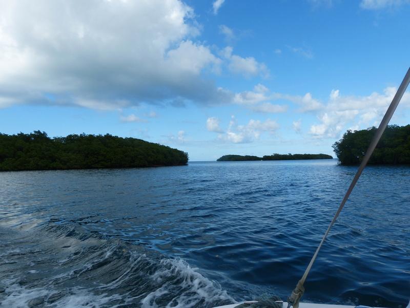 Lipette : Voyage en Guadeloupe P1450716