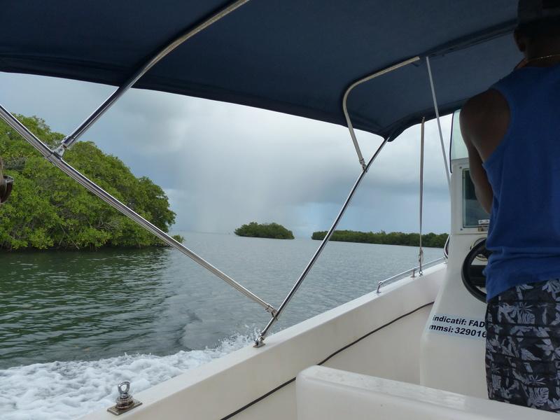 Lipette : Voyage en Guadeloupe P1450720