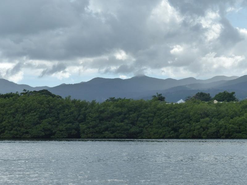 Lipette : Voyage en Guadeloupe P1450722