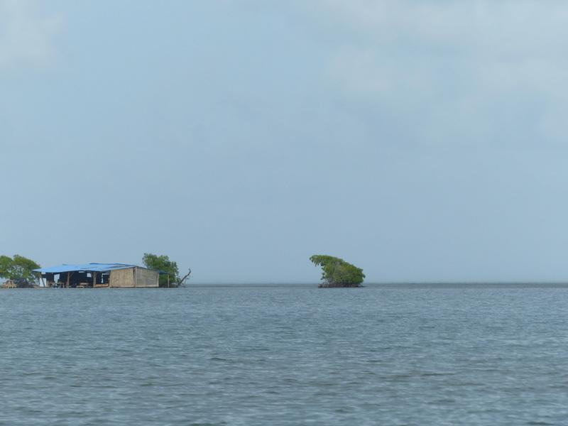 Lipette : Voyage en Guadeloupe P1450727