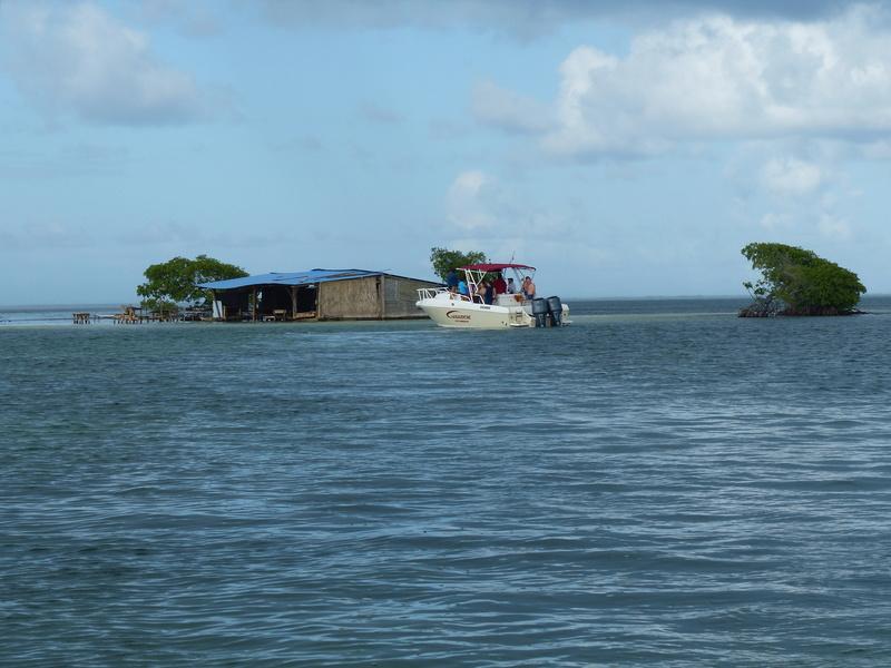 Lipette : Voyage en Guadeloupe P1450728