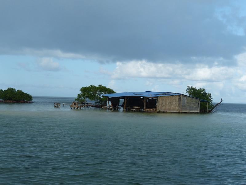 Lipette : Voyage en Guadeloupe P1450730