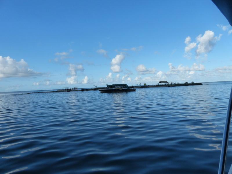 Lipette : Voyage en Guadeloupe P1450731