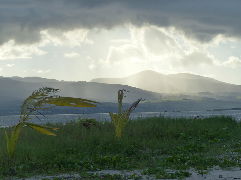 Lipette : Voyage en Guadeloupe P1450739