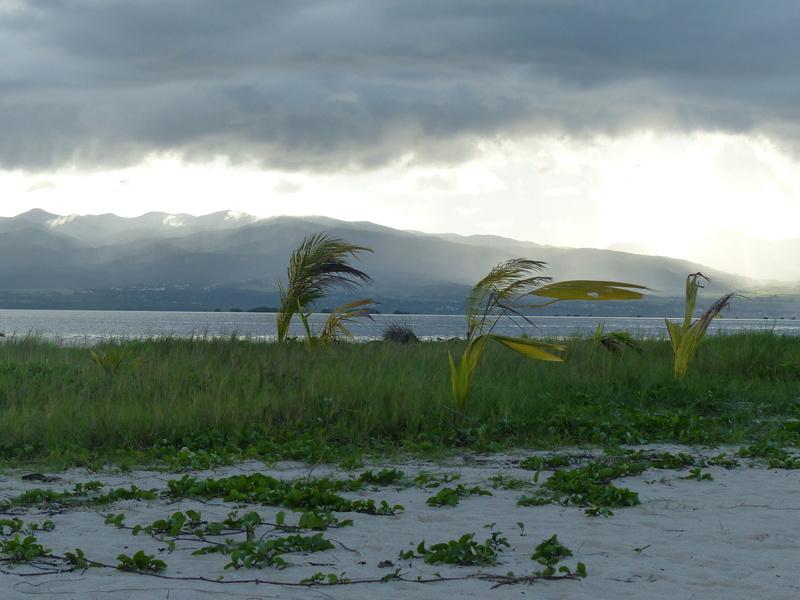 Lipette : Voyage en Guadeloupe P1450740