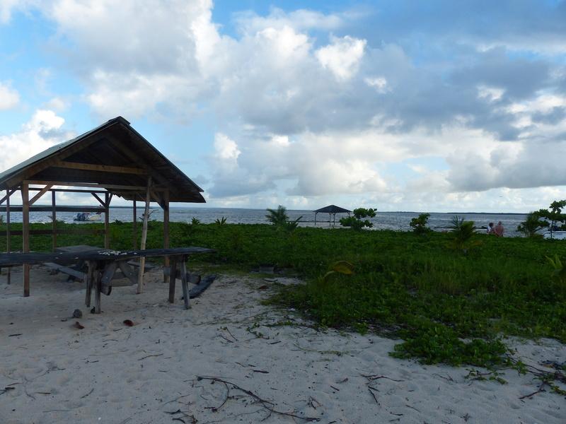 Lipette : Voyage en Guadeloupe P1450742