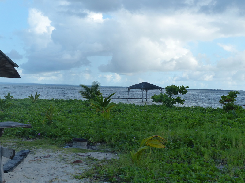Lipette : Voyage en Guadeloupe P1450743