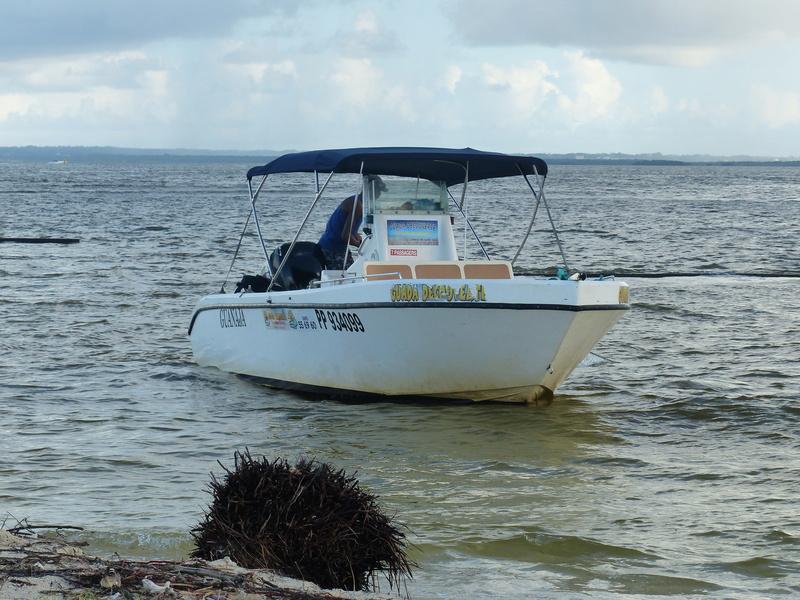 Lipette : Voyage en Guadeloupe P1450744