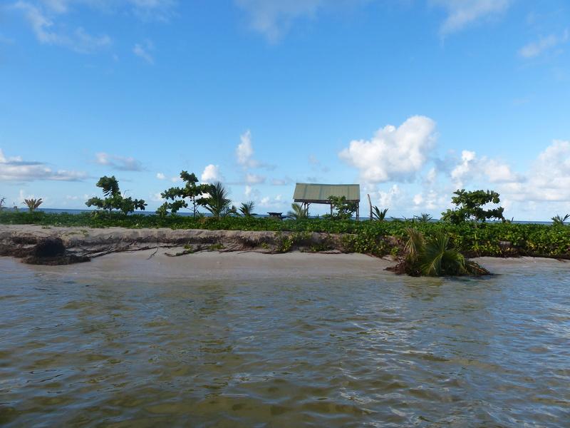 Lipette : Voyage en Guadeloupe P1450746
