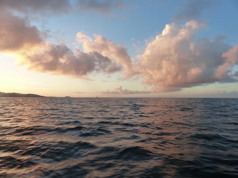 Lipette : Voyage en Guadeloupe P1450757