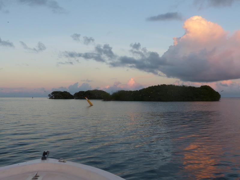 Lipette : Voyage en Guadeloupe P1450758