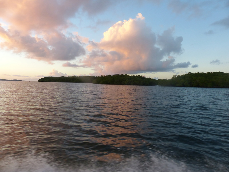 Lipette : Voyage en Guadeloupe P1450761
