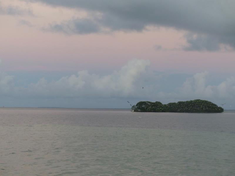 Lipette : Voyage en Guadeloupe P1450774