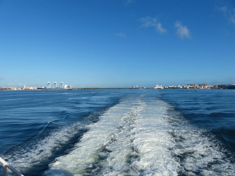 Lipette : Voyage en Guadeloupe P1450820