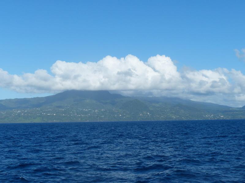Lipette : Voyage en Guadeloupe P1450823