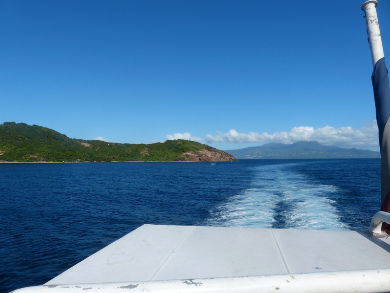 Lipette : Voyage en Guadeloupe P1450825