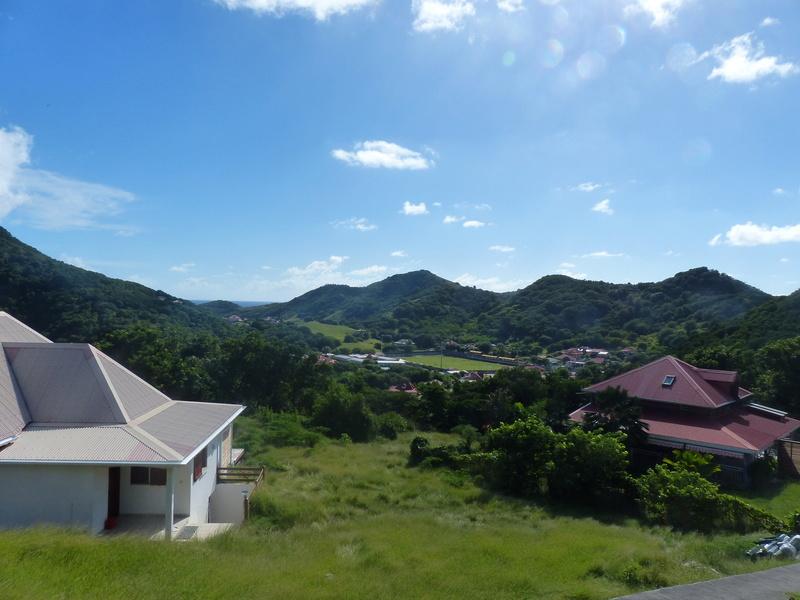 Lipette : Voyage en Guadeloupe P1450841