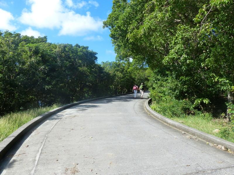 Lipette : Voyage en Guadeloupe P1450843