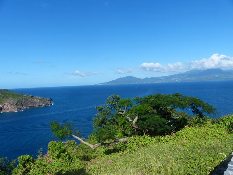 Lipette : Voyage en Guadeloupe P1450846