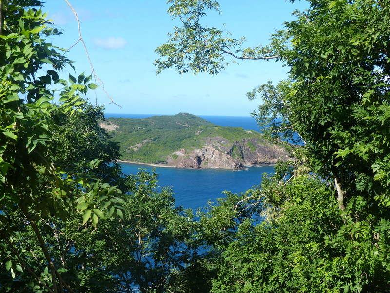 Lipette : Voyage en Guadeloupe P1450848