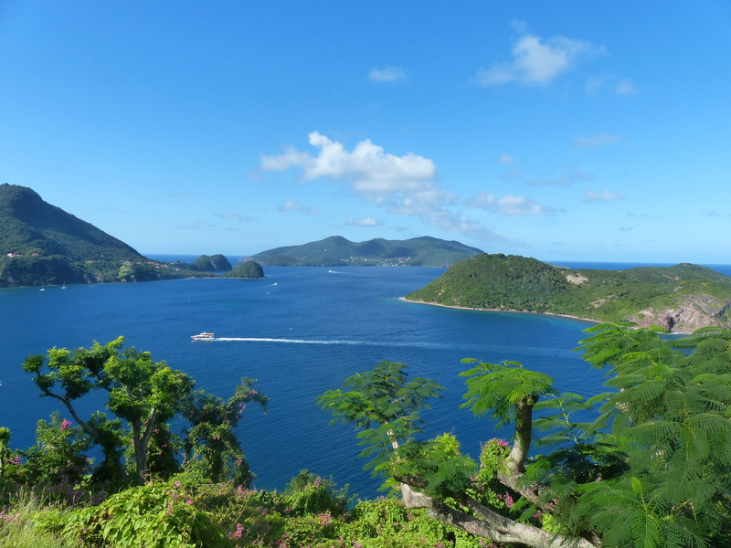 Lipette : Voyage en Guadeloupe P1450851