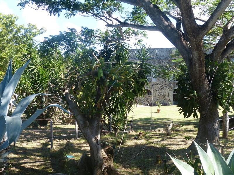 Lipette : Voyage en Guadeloupe P1450919