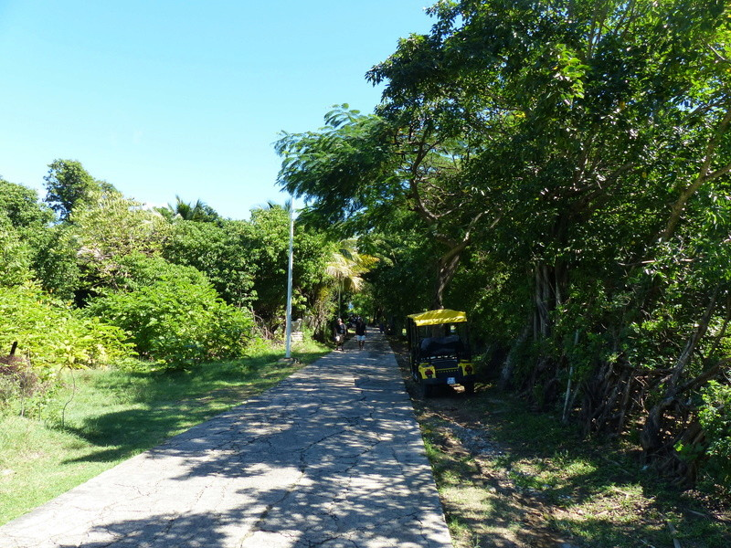 Lipette : Voyage en Guadeloupe P1460026