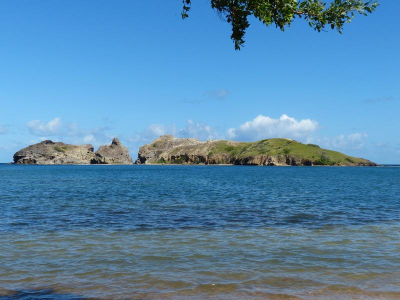 Lipette : Voyage en Guadeloupe P1460029