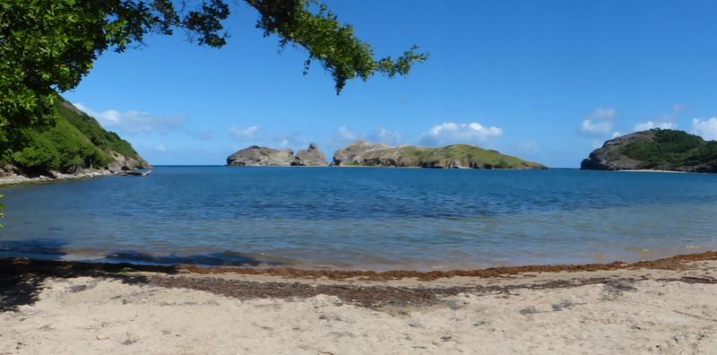 Lipette : Voyage en Guadeloupe P1460032