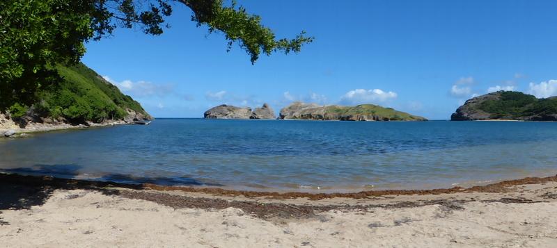 Lipette : Voyage en Guadeloupe P1460033