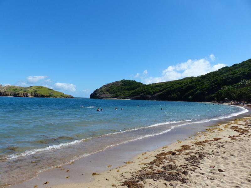 Lipette : Voyage en Guadeloupe P1460034