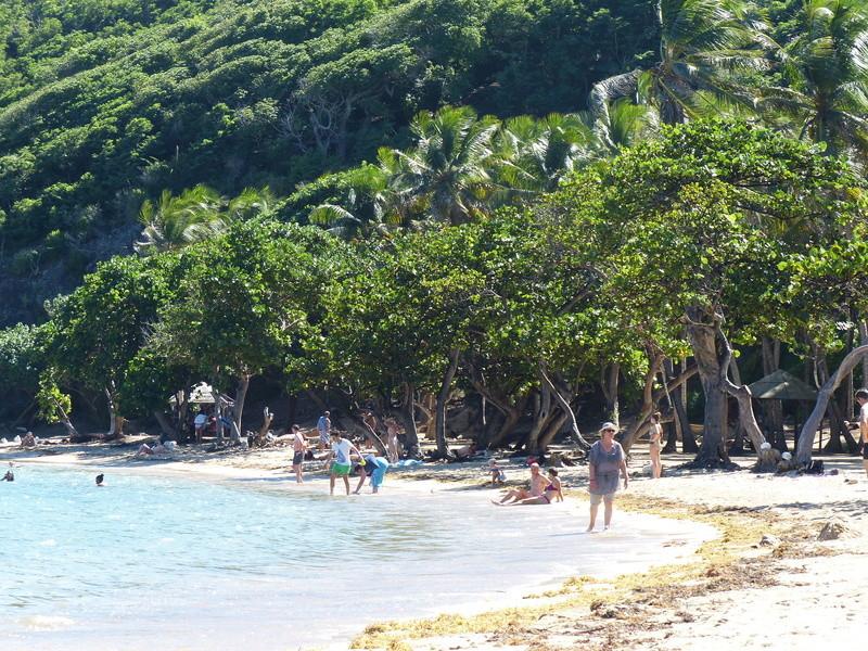 Lipette : Voyage en Guadeloupe P1460035