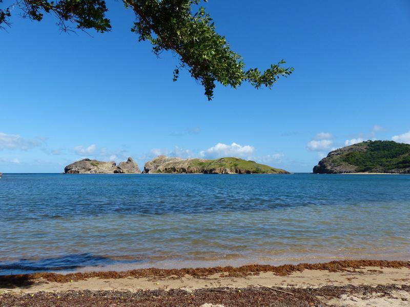 Lipette : Voyage en Guadeloupe P1460036
