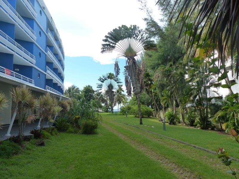 Lipette : Voyage en Guadeloupe P1470013