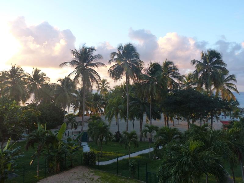 Lipette : Voyage en Guadeloupe P1470018