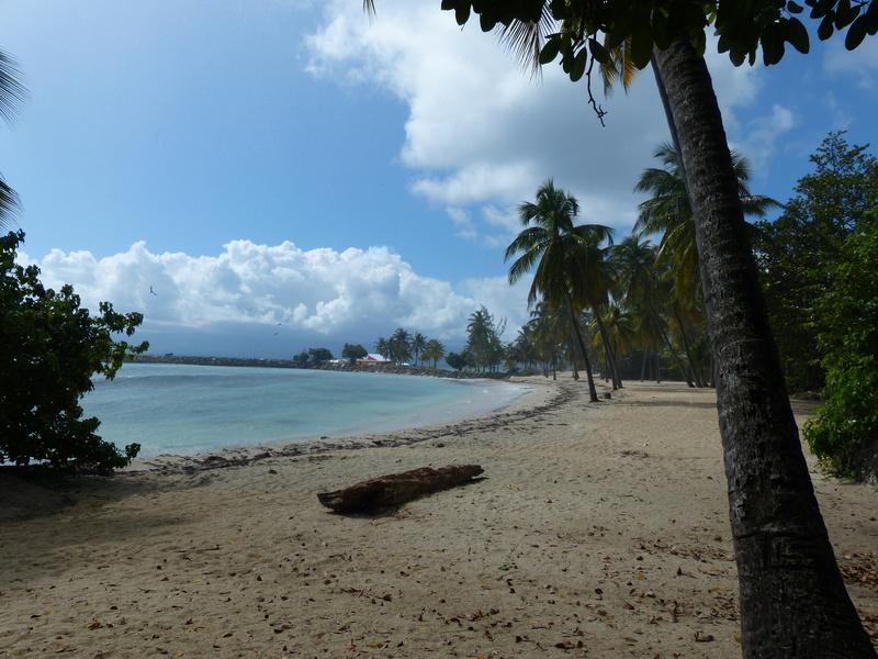 Lipette : Voyage en Guadeloupe - Page 4 P1470124