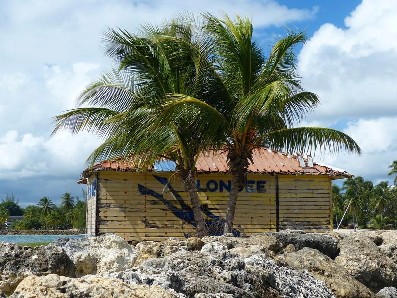 Lipette : Voyage en Guadeloupe - Page 4 P1470128