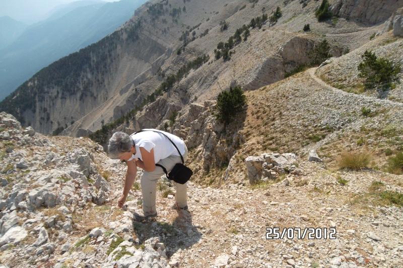 Davarrée au Mont Ventoux - Page 4 Ventou10