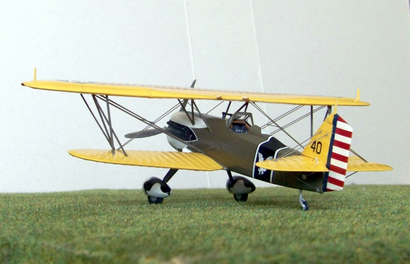 Lindberg - Curtiss P-6E Hawk, 1/48 100_6620