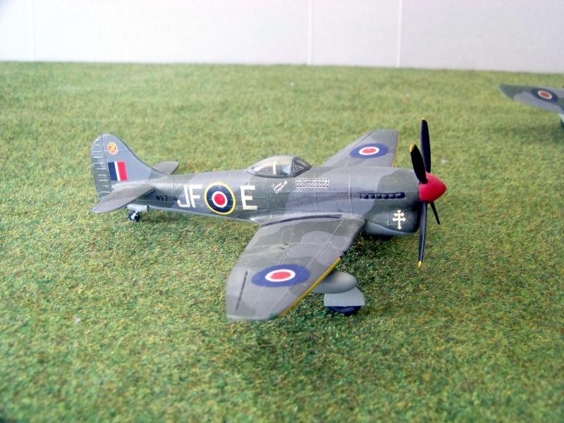 Hawker Tempest V 100_6912