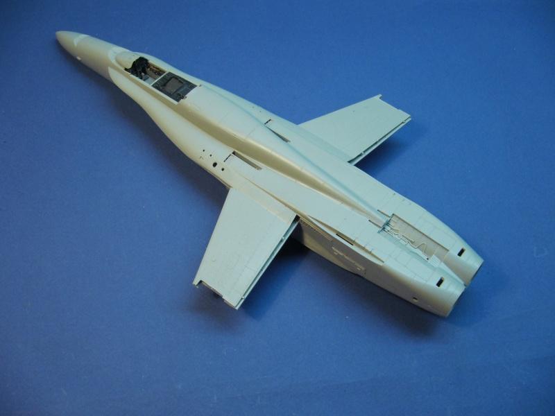 Un frelon dans la tempête F/A-18 A Hornet HB 1/48 P1030240